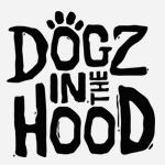 DOGZ IN THE HOOD, la série d'animation créée par le publicitaire Julien Renault, co-écrite avec Gabriel Boisante et produite par Skill Lab