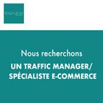 Banzaï recrute un Traffic Manager / spécialiste e-commerce (m/f)