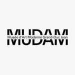 Tout savoir sur le nouveau logo du MUDAM