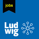 LUDWIG is looking for a Project Manager