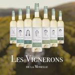 Domaines Vinsmoselle dévoile la nouvelle marque «Les Vignerons de la Moselle» avec BetoCee